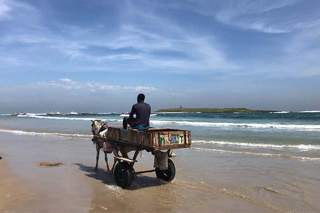Man Riding a Cart on Beach